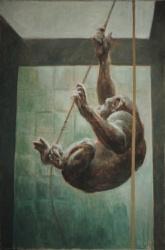 Bonobo (2).JPG