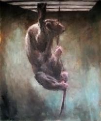 Bonobo am Seil (2).JPG